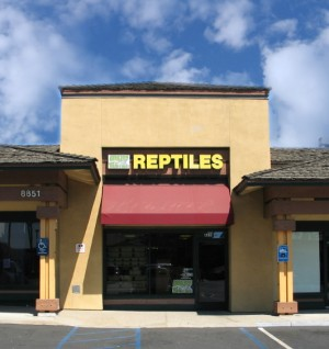 Amazon Reptile Center Store